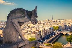 在巴黎圣母院的面貌古怪的人 库存照片
