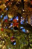 在(圣诞节)树的熊 库存图片