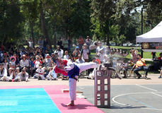 在2015年在Rengstorff公园的高段棋手跆拳道/跆拳道武术公开示范在山景城加利福尼亚 库存照片