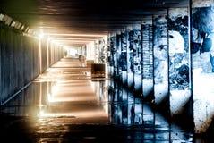 在水坑的反射在瓶胡同降低散步,海斯廷斯 免版税库存照片