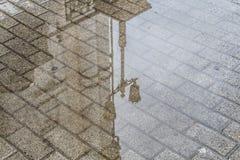 在水坑的反映 免版税库存图片