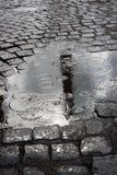 在水坑的雨下落 免版税库存图片