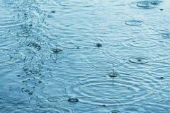 在水坑的雨珠 免版税库存图片