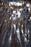 在水坑的登山车轨道在泥泞的路 免版税库存照片