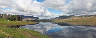 在水坝西部的斯佩河,苏格兰在春天 免版税库存照片