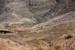 在费埃特文图拉岛的美丽的火山的山 加那利群岛tenerife 费埃特文图拉岛 免版税图库摄影