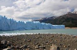 在巴塔哥尼亚的佩里托美利奴绵羊的冰川 免版税库存照片