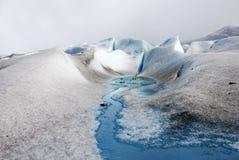 在巴塔哥尼亚的佩里托美利奴绵羊的冰川 免版税库存图片