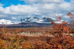在巴塔哥尼亚的秋天。山脉达尔文,火地岛 库存照片