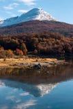 在巴塔哥尼亚的秋天。山脉达尔文,火地群岛 免版税库存照片
