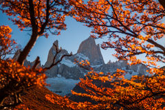 在巴塔哥尼亚的秋天 阿根廷fitz roy 库存图片