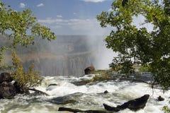 在维多利亚瀑布,利文斯东,赞比亚顶部的宽看法背景风景 免版税库存图片