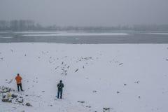 在冻多瑙河的人哺养的鸟有被抓住的bo的 库存照片