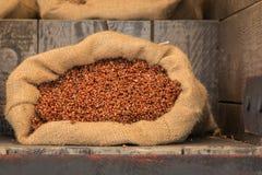 在黄麻大袋里面的红色玉米五谷 库存照片