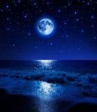 在满天星斗的天空的超级月亮在海海滩 库存图片