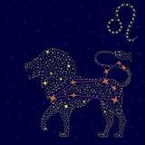 在满天星斗的天空的黄道带标志利奥 库存照片