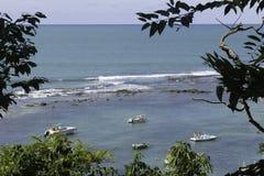 在负子蟾海滩的小起动 免版税库存图片