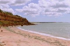 在猴子Mia鲨鱼湾的红色虚张声势 免版税图库摄影