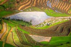 在水季节的露台的ricefield在Mu Cang柴,越南 库存图片