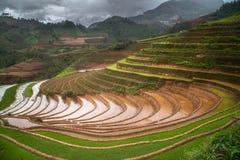 在水季节的露台的ricefield在Mu Cang柴,越南 图库摄影