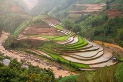 在水季节的露台的ricefield在Mu Cang柴,越南 免版税库存照片