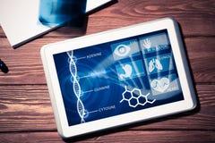 在医学的数字技术 图库摄影