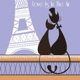 在巴黎导航与逗人喜爱的恋人猫的例证 免版税库存图片