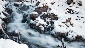 在冻小河的水 斯诺伊河在森林里在冬天 长期风险 股票视频