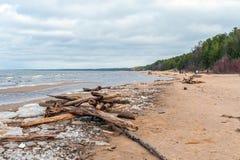 在绍尔克拉斯蒂镇,拉脱维亚附近的波罗的海海岸线 免版税库存图片