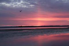 在黑尿病全国野生生物保护区的日落 库存照片