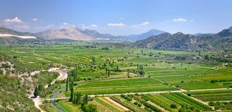 在黑山的山的肥沃的山谷 库存图片