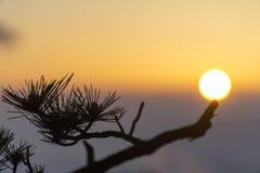 在黄山的日出 库存照片