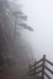 在黄山(黄色山)的有薄雾的早晨,中国 库存图片