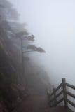 在黄山(黄色山)的有薄雾的早晨,中国 免版税库存照片