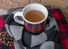 在围巾包裹的舒适冬天杯子 免版税库存图片