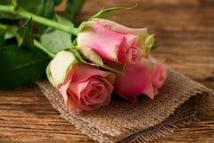 在黄麻布料的三朵beautifull桃红色玫瑰 免版税库存照片