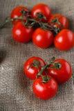 在黄麻布料的红色水多的蕃茄 库存照片