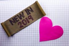 在2019年手写文本新 意味新时代最新的年期间季节年鉴以后的现代的概念写在纸板片断 图库摄影