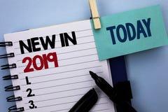 在2019年概念性手文字显示新 书面的企业照片文本新时代最新的年期间季节年鉴以后的现代 免版税库存照片