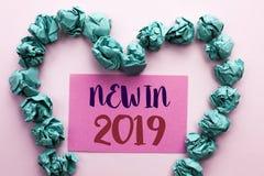 在2019年词文字文本新 新在桃红色棍子写的时代最新的年期间季节年鉴以后的现代的企业概念 库存照片
