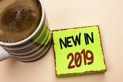 在2019年词文字文本新 新在绿色Stic写的时代最新的年期间季节年鉴以后的现代的企业概念 库存图片