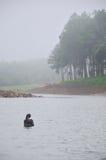 在水库湖的黑天鹅游泳在剧痛Ung的 免版税库存图片