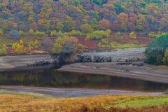 在水库的最低水位水平在Auttumn落 免版税库存图片