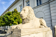 在总统府前面的石狮子雕象,华沙 库存图片