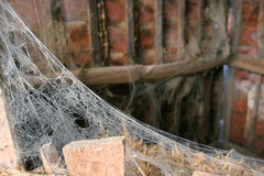 在离开的村庄的蜘蛛网 免版税库存照片
