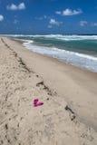 在离开的海滩的桃红色啪嗒啪嗒的响声 免版税库存照片