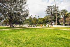 在贝弗利庭院公园的棕榈树 库存图片