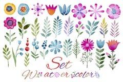 在水彩和莓果做的套园林植物、花、叶子、果子 免版税图库摄影