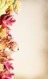 在水彩纸的秋叶 免版税库存图片