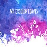 在水彩背景的叶子 免版税图库摄影